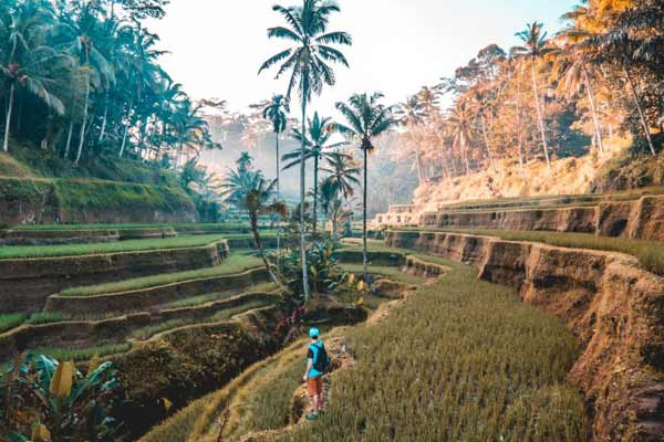 asia-travel