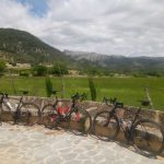 Port De Pollenca to Muro & Sa Pobla in-land circular ride