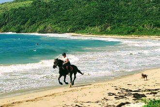Horse riding on the beach antigua